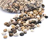 Royal Imports 5lb Small Decorative Ornamental River Pebbles Rocks for Fresh Water Fish Animal Plant Aquariums, Landscaping, Home Decor etc. with Netted Bag, Natural Photo, best price $11.99 new 2018