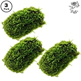 Luffy Coco Mini Moss - Builds a Beautiful and Natural Aquascape: Easy Care, Hardy and Long Lasting Plant: Filters and Provides Aquariums with Oxygen Photo, best price $28.99 new 2019