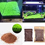 Aquarium Plants Seeds Aquatic Double Leaf Carpet Water Grass, for Fish Tank Rock Lawn Garden Decor Photo, best price $7.99 new 2018