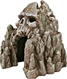 Exotic Environments Skull Mountain Aquarium Ornament, Small, 5-1/2-Inch by 6-Inch by 6-Inch Photo, best price $16.99 new 2020